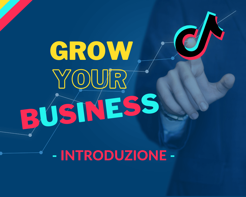 tiktok business introduzione